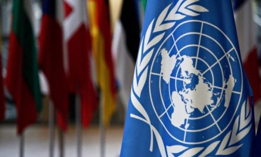 ONU enviará a experta para analizar impacto de las sanciones en Venezuela