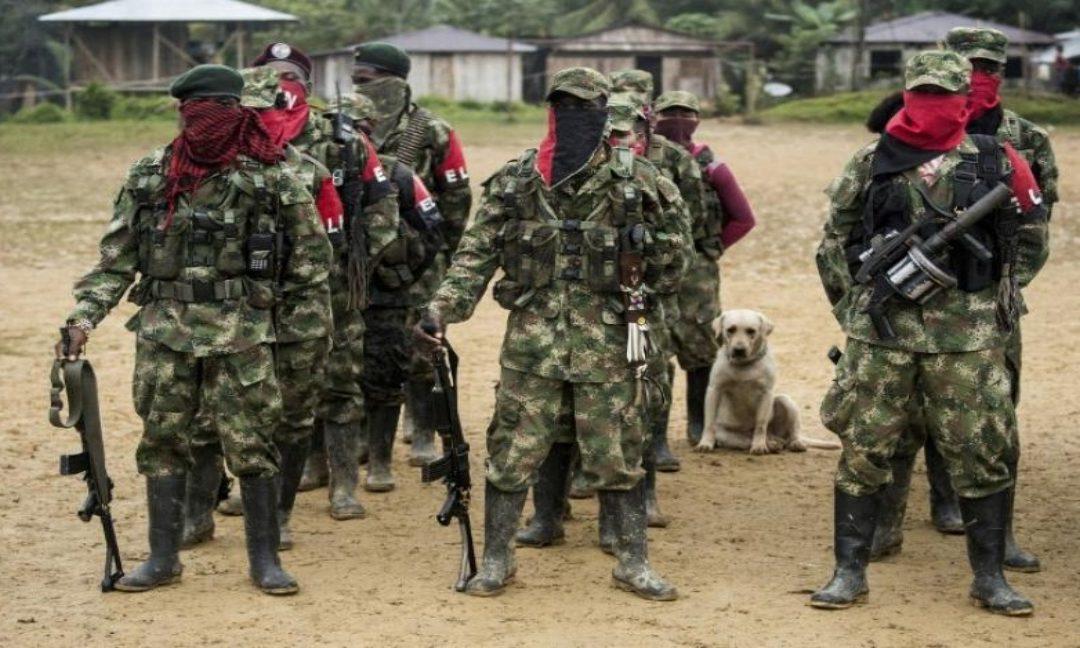 FundaRedes denuncia la presencia de grupos guerrilleros en 20 estados del país - Venezuela Unida